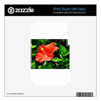 Summer Flower iPod Touch 4G Decals
