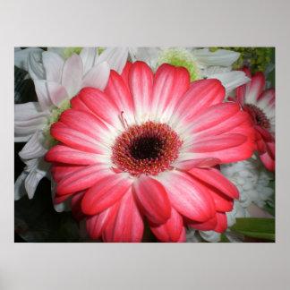 Summer Flower Print