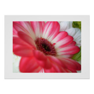 Summer Flower Poster