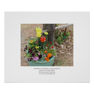Summer Flowers in Turquoise Pot Photograph Poster