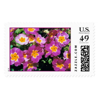 summer flowers stamps