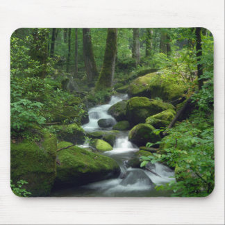 Summer Forest Brook Mouse Pad