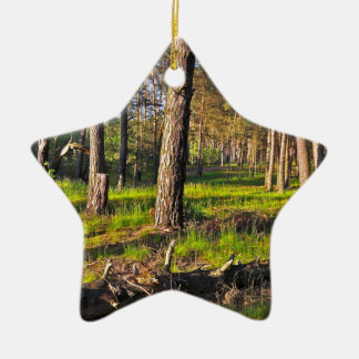 Summer forest in the evening light ceramic ornament