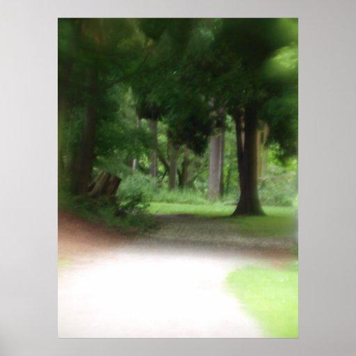 Summer Forest Print