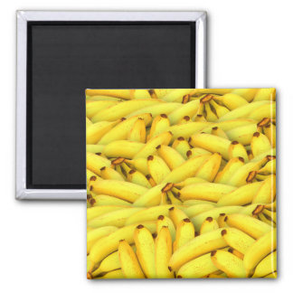 summer fresh bananas fruit photo magnet