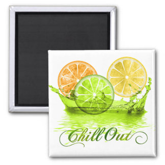 Summer Fruit Splash ID165 Magnet