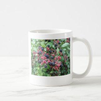 Summer Fruits (4851) Classic White Mug 11oz