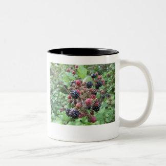 Summer Fruits (4852) Black Two-Tone Mug 11oz