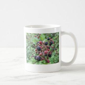 Summer Fruits (4852) Classic White Mug 11oz