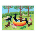 Summer Fun Labradors Painting Post Card