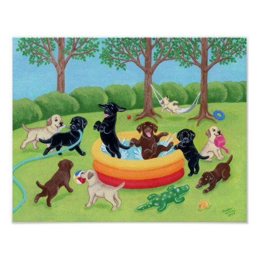 Summer Fun Labradors Poster