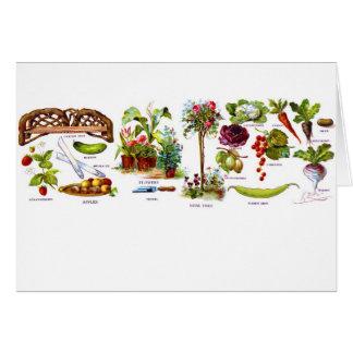 Summer Garden Botanicals Card
