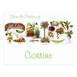 Summer Garden Botanicals Postcard