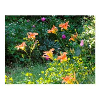 Summer Garden Postcard, winter thoughts Postcard