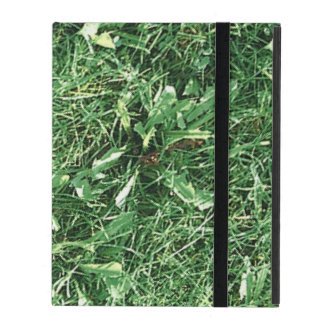 Summer Grass iPad Cover
