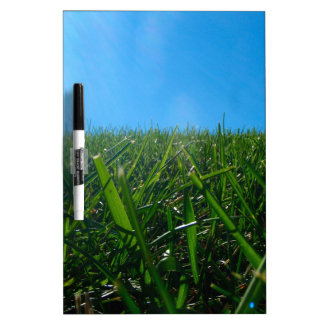 Summer Green Grass and Blue Sky Dry Erase Board