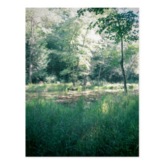 Summer hike postcard
