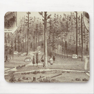 Summer Home, Lewis residence Mouse Pad