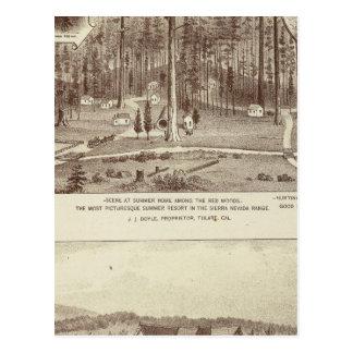 Summer Home, Lewis residence Postcard