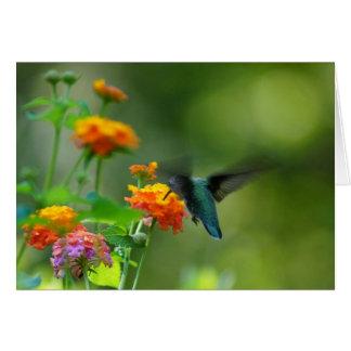 Summer Humming Card