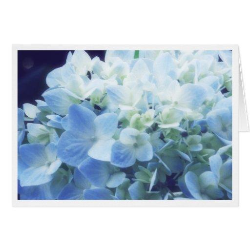 Summer Hydrandea Stationery Note Card