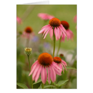 Summer in Bohemia Stationery Note Card