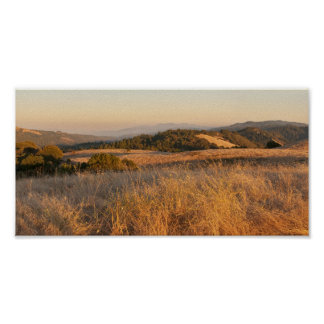 Summer in Central California Poster