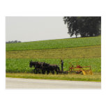 ~ Summer in Lancaster County ~ 35 Post Cards