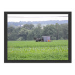 ~ Summer in Lancaster County ~ 6 Post Card