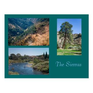 Summer in the Sierras Postcard