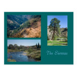Summer in the Sierras Postcards
