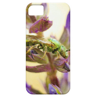 Summer Insect iPhone SE/5/5s Case
