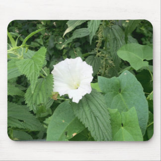 Summer Ivy Mouse Pad