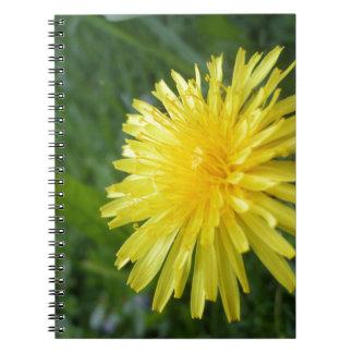 Summer Jewel Notebook