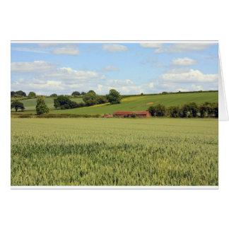 summer landscape card