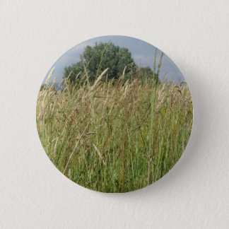 Summer landscape of wild field . Tuscany, Italy Pinback Button