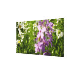 Summer Lilac and Daisies Colorful Wildflowers Canvas Print