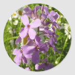 Summer Lilac and Daisies Colorful Wildflowers Classic Round Sticker