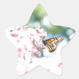Summer Love :: Monarch Butterfly Pink Flowers Star Sticker