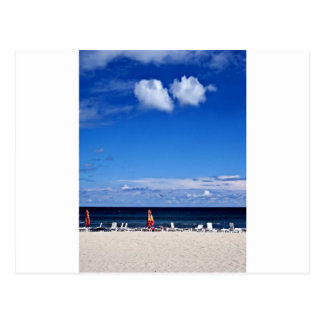 Summer Love Postcard