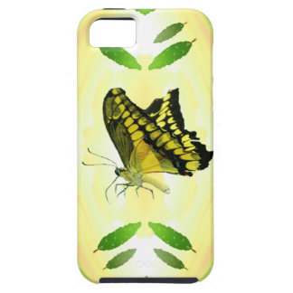 Summer Lover Butterfly iPhone 5 Covers