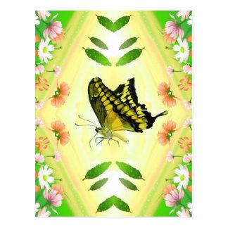 Summer Lover Butterfly Postcard