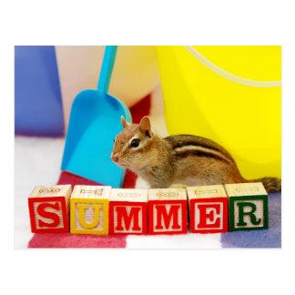 Summer Loving Chipmunk Postcard