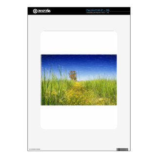 Summer Meadow Decals For The iPad