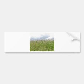 Summer meadow panorama bumper sticker