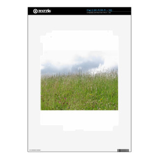 Summer meadow panorama decal for the iPad 2