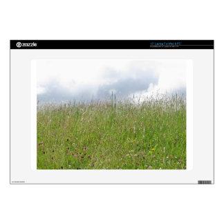 Summer meadow panorama laptop skins