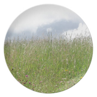 Summer meadow panorama melamine plate