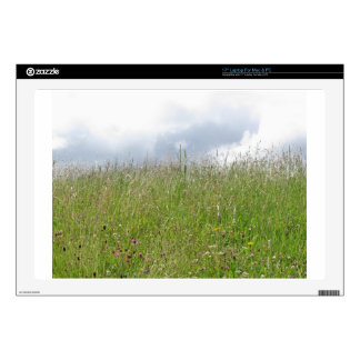 """Summer meadow panorama decals for 17"""" laptops"""