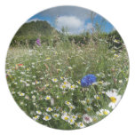 Summer Meadow Party Plate